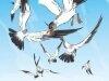 Иллюстрации к сказкам esaulov21
