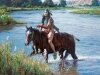 Индейцы в рисунках Мартина Греля 7