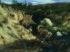 Пейзажи Крыжицкого 11