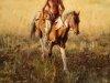 Индейцы Кучеры 19