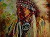 Индейцы Кучеры 9