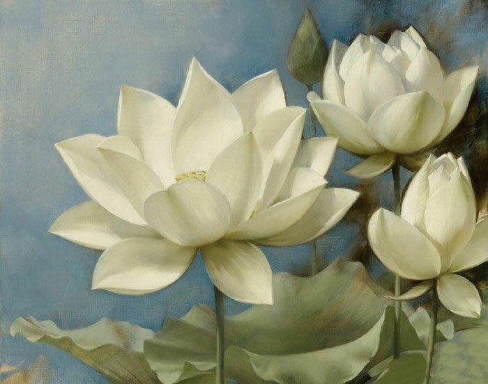 Рисунки цветов899494