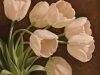 Цветы456765673
