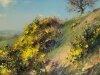 Красивые пейзажи preston11