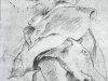 Наброски гравюры Рубенса 22