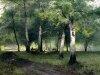 Пейзажи Шильдера 4