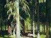 Пейзажи Шильдера 16