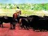 Красивые акварели Don Weller 8