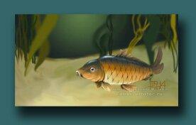 Уроки рисования рыб